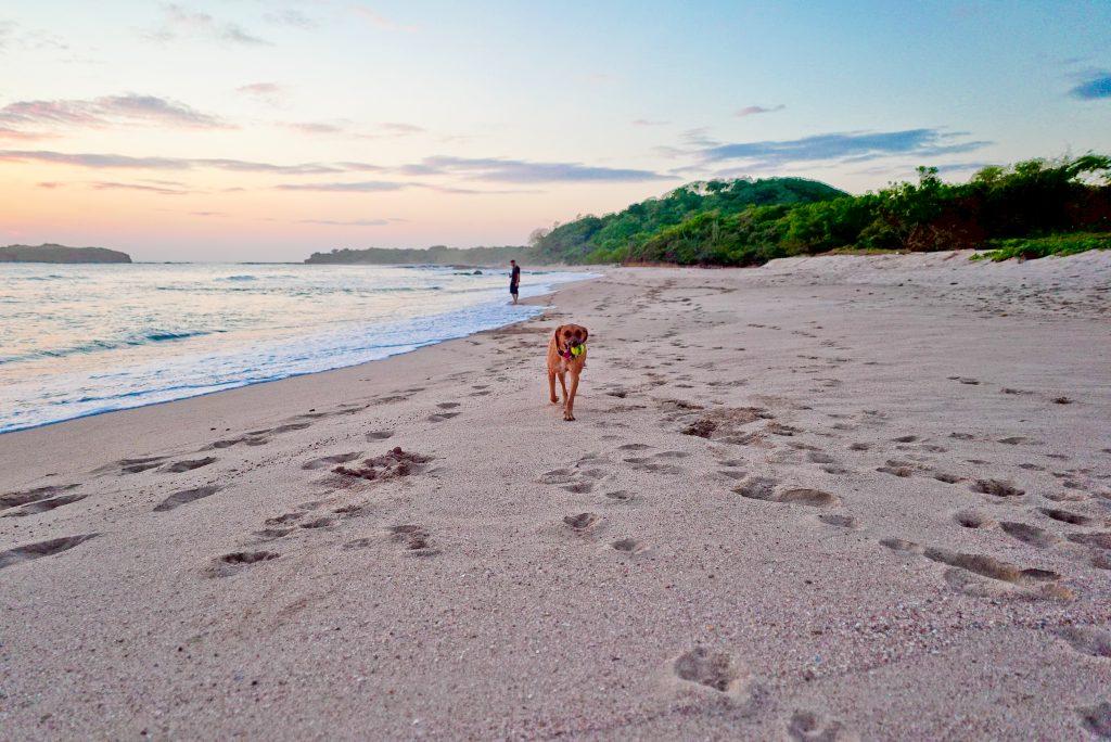 Kaja enjoying the private beach (Nicaragua)